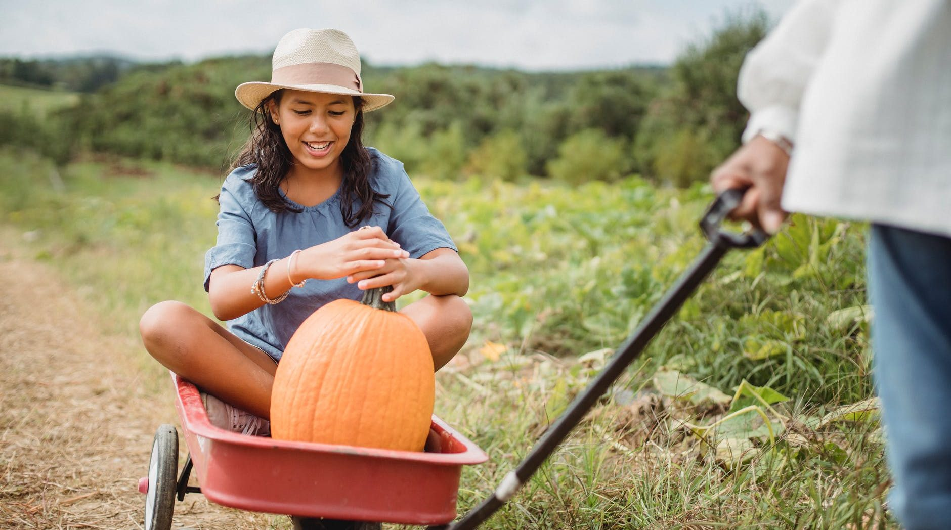 crop gardener carrying ethnic girl with pumpkin in garden cart