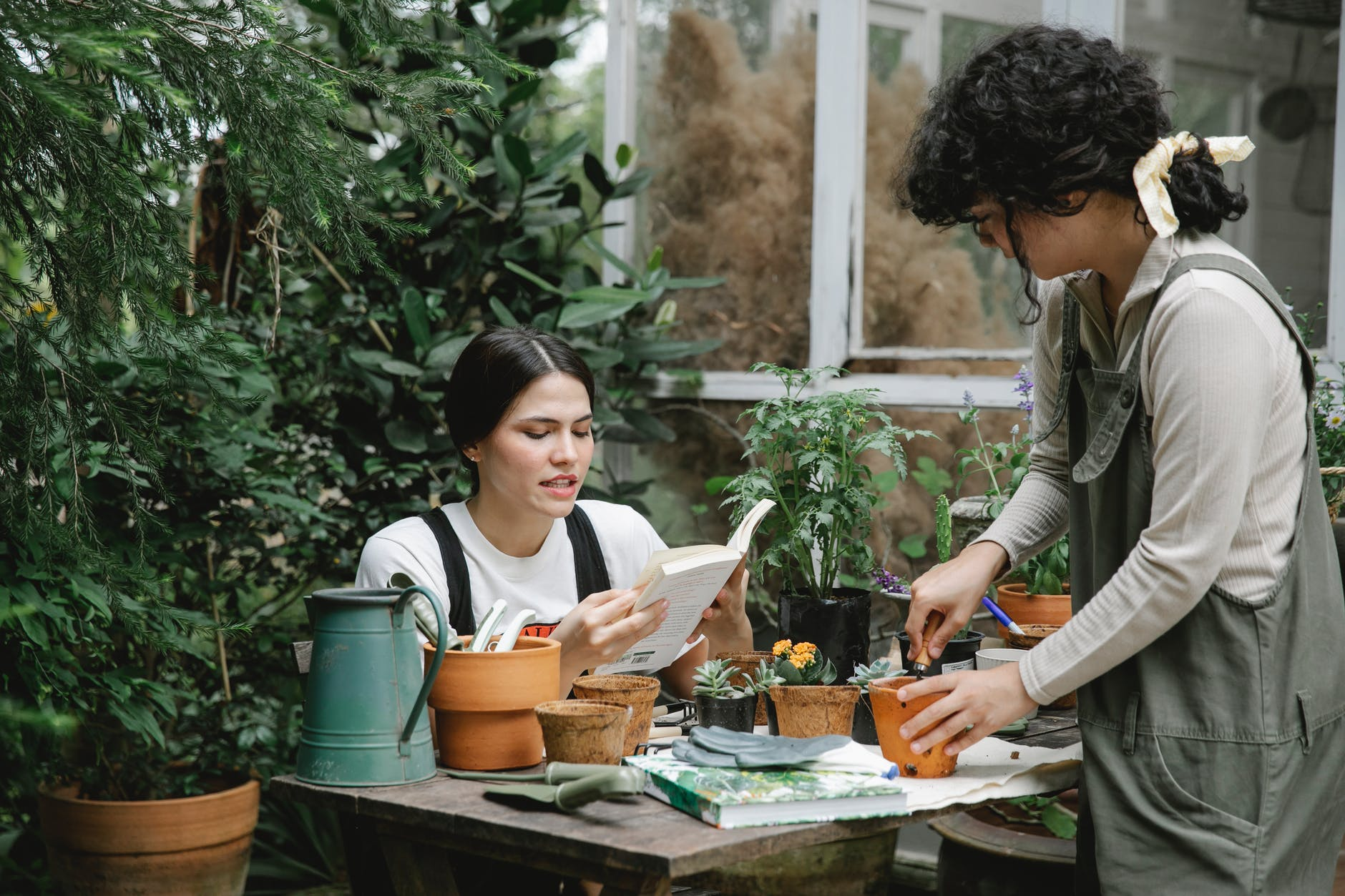 focused female gardener reading book with colleague planting seedling